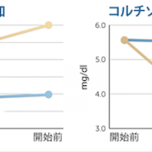 超越瞑想によるセロトニンの増加およびコルチゾールの減少の科学的研究チャート